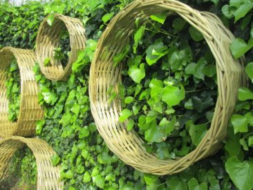 bulles de jardin en osier stabilisé