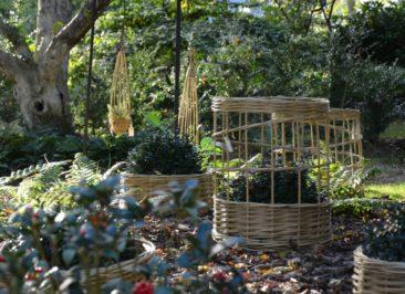 osier stabilisé tissé au jardin