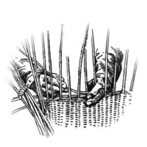 les mains du vannier et l'osier